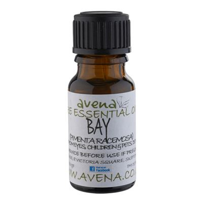 Bay Essential Oil (Laurus Nobilis)