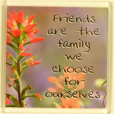 Friends are the family we choose for ourselves Fridge Magnet 031