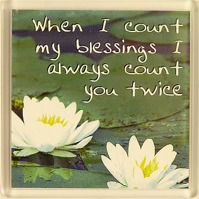 When I count my blessings I always count you twice Fridge Magnet 035
