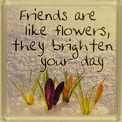 Friends are like flowers, they brighten your day Fridge Magnet 038