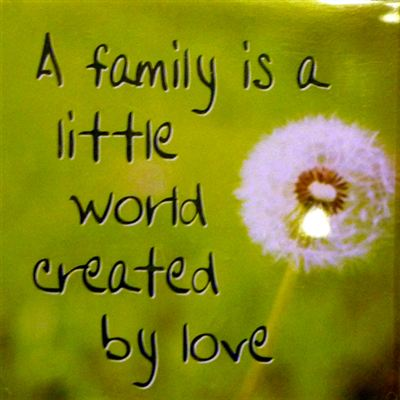 A family is a little world created by love Fridge Magnet 046