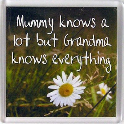Mummy knows a lot but grandma knows everything Fridge Magnet 047