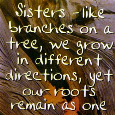 Sisters - like branches on a tree... Fridge Magnet 053