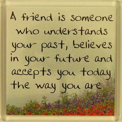 A friend is someone who understands your past... Fridge Magnet 061