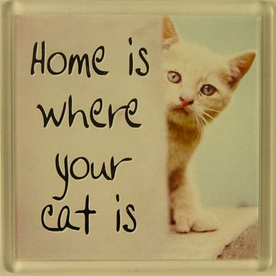 Home is where your cat is Fridge Magnet 086