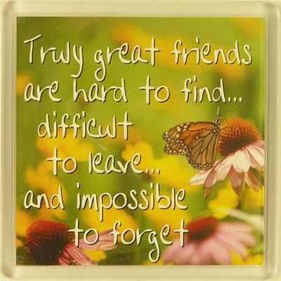 Truly great friends are hard to find... Fridge Magnet 126