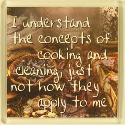 Fridge Magnet 127 I understand the concepts of cooking