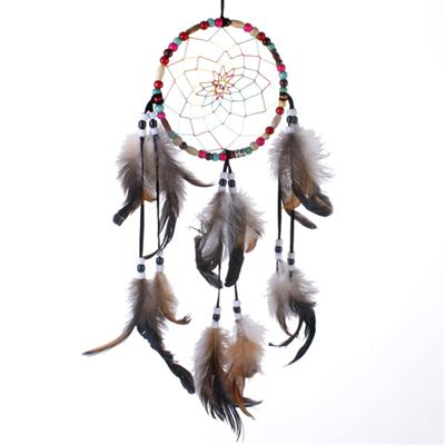 Multi Coloured Dream Catcher with Beads