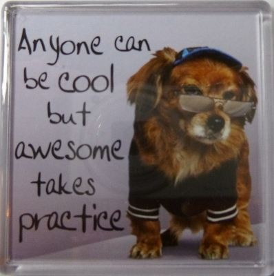 Anyone can be cool but awesome takes practice Fridge Magnet 188