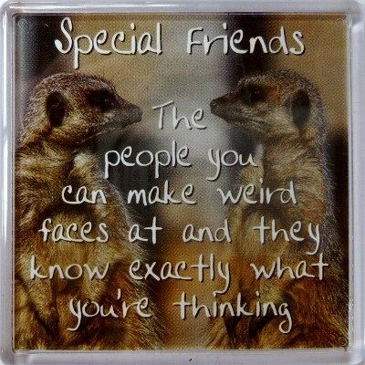 Special Friends - The people you can... Fridge Magnet 160
