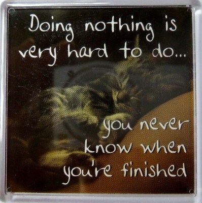 Doing nothing is very hard to do... Fridge Magnet 063