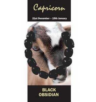 Capricorn Natural Jewellery Bracelet