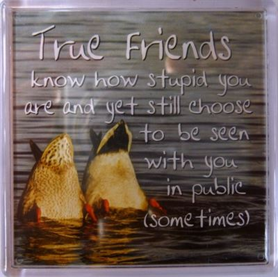 True friends know how stupid you are... Fridge Magnet 165