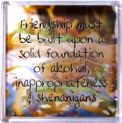 Friendship must be built upon a solid foundation... Fridge Magnet 116