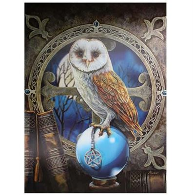 Owl Spell Keeper 3D Picture