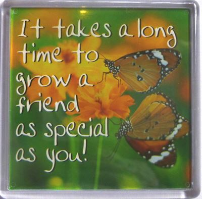 It takes a long time to grow a friend... Fridge Magnet 168