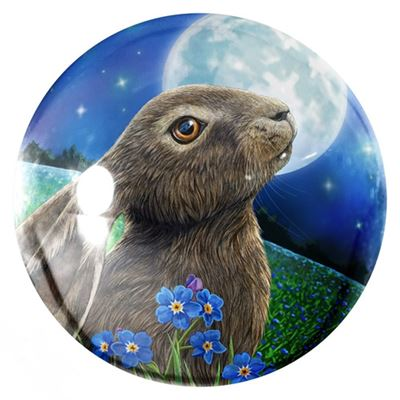 Moon Gazing Hare Paperweight