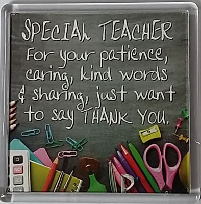 SPECIAL TEACHER For your patience... Fridge Magnet 140