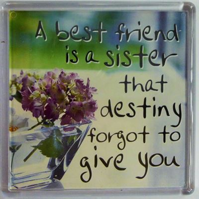 A best friend is a sister that destiny forgot to give you Fridge Magnet 080
