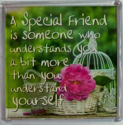 A Special Friend is someone who understands you… Fridge Magnet 134